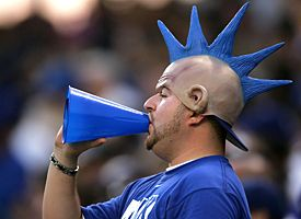 LA Dodgers Fan