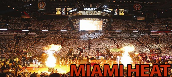 Miami Heat AA Center